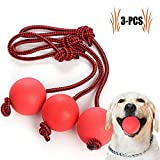 Legendog Dog <span class='highlight'>Rope</span> <span class='highlight'><span class='highlight'>Ball</span></span>, 3 Pcs <span class='highlight'><span class='highlight'>Ball</span></span> <span class='highlight'>on</span> a <span class='highlight'>Rope</span> Dog Toy <span class='highlight'>Natural</span> Elastic Solid <span class='highlight'>Rubber</span> Dogs <span class='highlight'><span class='highlight'>Ball</span></span>s Chew Toys for Small Dogs