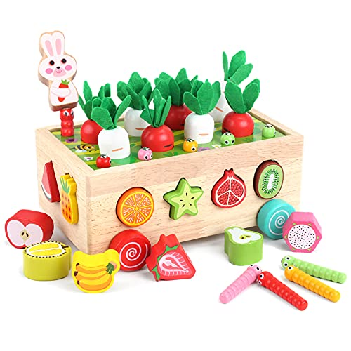 Toddlers Montessori Wooden Educational Toys for Boys Girls Age 2 3+ Year Old, Kid Wood Fine Motor Skills Carrot Harvest Game Toys, Shape Color Recognition Learning Toy for Kids