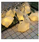 1UTech 2021 Easter Decoration, Rabbit-Shaped Warm Light Color Decoration lamp, (4.9ft~19.6ft) Optional, AAA Battery Power Supply, Increase The Party Atmosphere,6m with 40 Light Battery