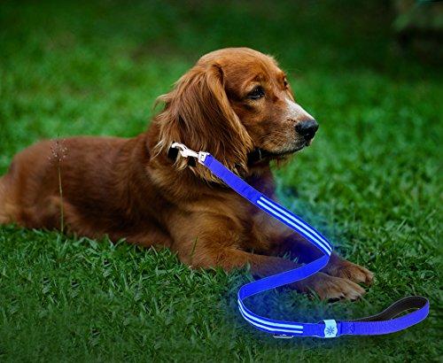Moco Best Light Up Rechargeable 2 Strip LED Nylon Dog Leash