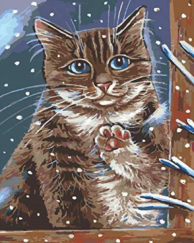 DIY olieverf kat in het raam verf op nummer kit kleurrijke canvas met borstels Decor decoraties Kerstcadeaus 16 * 20 Inch.40 * 50Cm