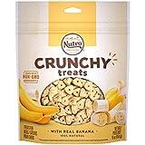 NUTRO Small Crunchy Natural Dog Treats with Real Banana, 16 oz. Bag