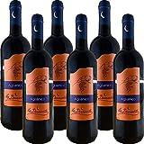 Uvaggio: Aglianico 100%; Gradazione Alcolica: 13°; Zona Produzione: Pendici Monte Taburno; Temperatura di Servizio: 16-18 °C; Confezione:6 Bottiglie da 75 Cl;