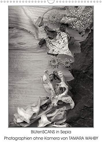 BlütenScans in Sepia, Photographien ohne Kamera von Tamara Wahby (Wandkalender 2021 DIN A3 hoch)