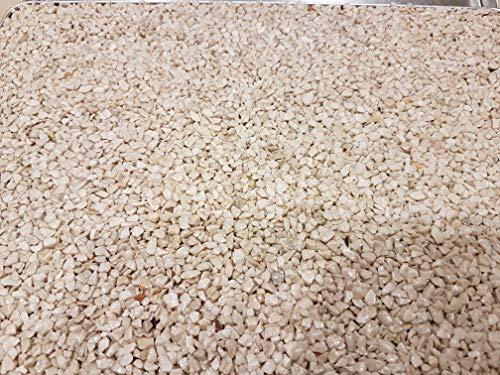 Steinteppich Marmorkies für 2qm l (25KG Marmorkies + 1,5KG Bindemittel, Beige Bottichino)