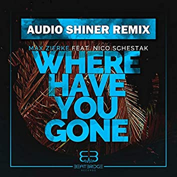 Where Have You Gone (Audio Shiner Remix)