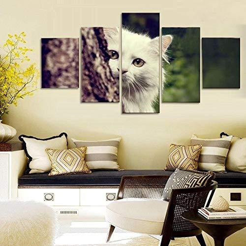 yuandp Schilderij Hoofddecoratie IKEA wit katje huid, 5 stuks canvas, muurkunst, drukposter landscheepvaart L-30x40 30x60 30x80cm Frame
