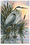 First Light Blue Heron Giclee Art Print Poster from Original Watercolor Painting by Artist Dave Bartholet 12' x 18'
