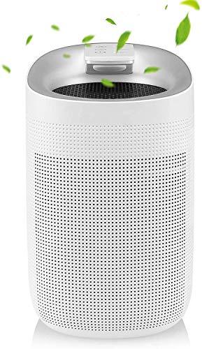 2in1 Luftreiniger & Luftentfeuchter, 750ml/24h, 1000ml Entfeuchter gegen Feuchtigkeit, Schmutz und Schimmel für bis 20m² Zimmer, Mit HEPA Filter gegen Staub, Rauch, Gerüche