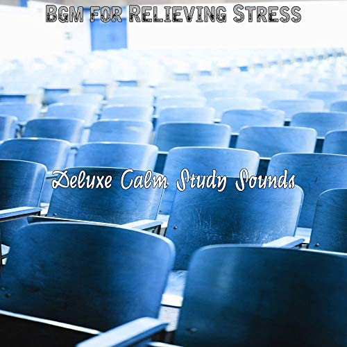 Deluxe Calm Study Sounds