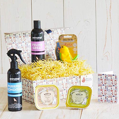 Pampered Paws Cat Hamper