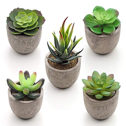 SONGMICS Künstliche Sukkulenten im Topf, 5 Stück verschiedenartige Kunstpflanzen, unechte Zimmerpflanzen, Dekopflanzen fürs Wohnzimmer, Büro, Bücherregal, Tischdeko LAP202GN