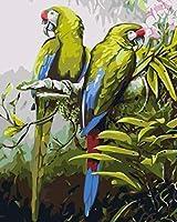 ペイントバイナンバーズ キャンバスペイント番号キットアートクラフトホームデコレーション - オウム (16 X 20インチ/フレームレス)