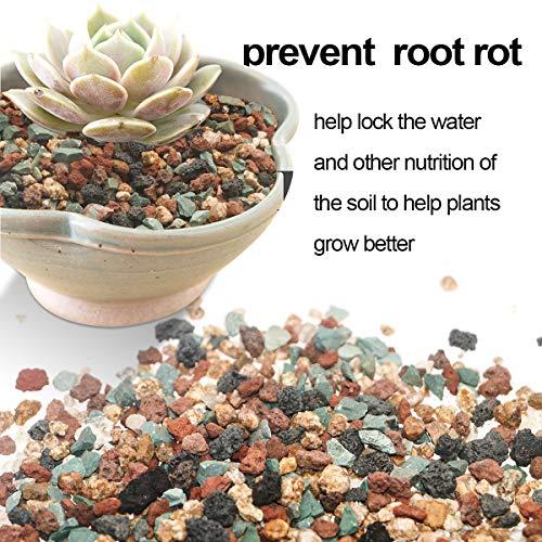 Mix Horticultural Lava Rock Pebbles Pumice Potting Soil Amendment Succulent Cactus Bonsai Gritty Rocks Decorative Gravel Plant Drainage Volcanic Rock for Terrarium Fairy Gardening Top Dressing 2.2lb