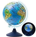 Exerz 25CM Zoo-Geo Illuminated Globe with Cable Free LED Light/ 2 in 1/ Day and Night - English Map - Physical and Zoo Dual Map - Light up globe - Educational and Fun, For School, Children, Family