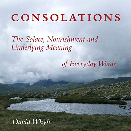 Consolations: The Solace, Nourishment and Underlying Meaning of Everyday Words  By  cover art