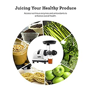 Omega J8006HDS Quiet Dual-Stage Slow Speed Masticating Juicer Makes Fruit and Vegetable 80 Revolutions per Minute High… |