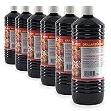 Höfer Chemie 6 L Grillanzünder flüssig für Holzkohle, Grillbrikett, Kamin, Grill, Feuerstellen UVM. - Mit Kindersicherheitsverschluss