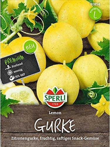 Sperli Gemüsesamen Gurke/Zitronengurke Lemon, grün