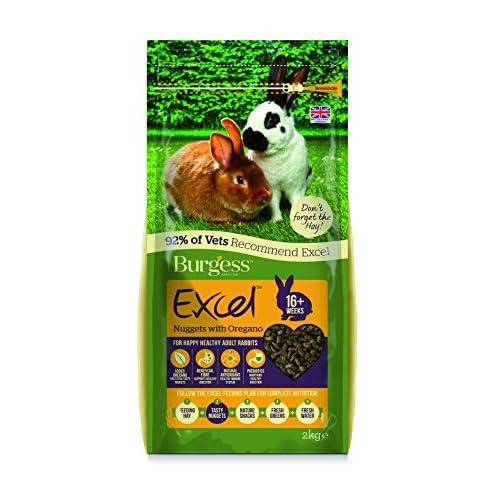 Burgess Excel, Alimento di Coniglio Adulto, Pepite con origano, 2 kg