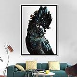 N / A Pintura sin Marco Cacatúa Australiana Arte de la Pared Lienzo Arte de la Pared Azul Marino Pájaro Animal Decoración del hogarZGQ5998 60X80cm