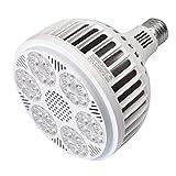 MENGS - Bombilla LED E27 PAR38 40 W sustituye a bombillas halógenas de 320 W, 4600 lm, luz blanca fría 6000 K, CA 85-265 V luz LED