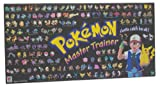 Pokemon Master Trainer 2001