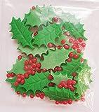 12houx et baies–comestibles Décorations de gâteau de sucre de Noël