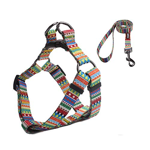 QQPETS Soft Cute Step-in Dog Harness and Leash Set No-Pull Dog Harness for Medium Puppy Breed Girl Boy Adjustable Chest:19-26