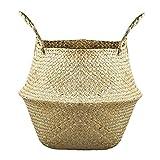 Fivesix Cesta de la Flor Plegable Seagrass Tejida Cesta del almacenaje de Paja Tejida Canasta de Almacenamiento para la decoración, Organizador y Almacenamiento