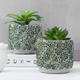 MyGift Modern Chic Concrete Flower Pots with Green Succulent Embossed Pattern, Set of 2