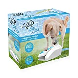 All Paws Dog Water Fountain