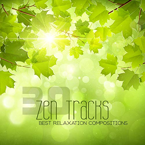 30 Zen Tracks: Best Relaxation Compositions, Soothing Night Sounds, Birds Singing, Water Sounds, Massage Music, Bath Time, Excellent Mood, Absolutely Harmony