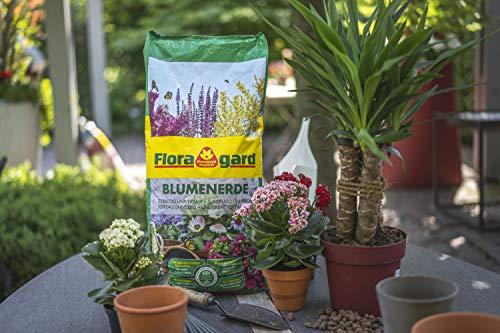 Floragard Blumenerde 5 L – für Balkon-, Kübel- und Zimmerpflanzen – mit Langzeitdünger - 4
