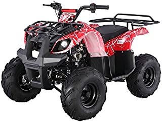 SmartDealsNow Powersports Adult & Kids ATV, Go-Kart, Dirtbike, Scooter, Quad, Motorcycle 49cc-250cc (Youth Size Utility Model ATV -125D)