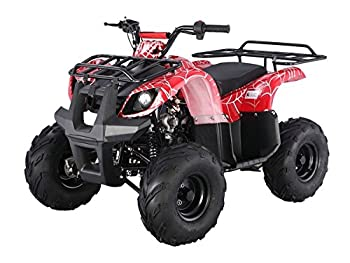 SmartDealsNow Powersports TAO Youth ATV Quad with Reverse   Youth Size Utility Model ATV -125D   Choose Your Color..