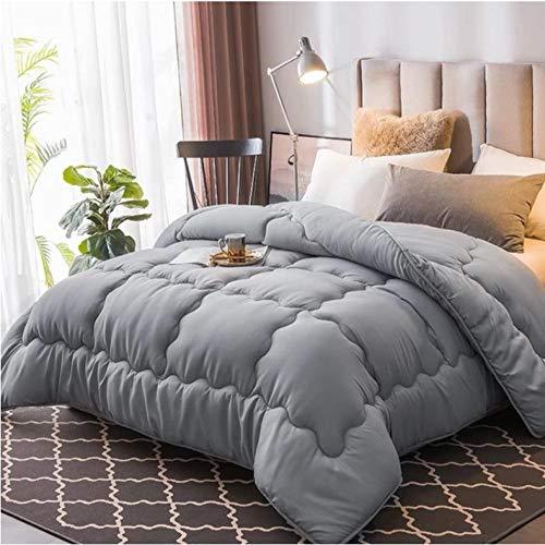 Four seasons quilt double air conditioning core duvet quilt single student autumn comforter winter thickened warm cotton quilt-Gray_150X200CM/3KG