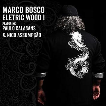 Electricwood I (feat. Nico Assumpção & Paulo Calasans)