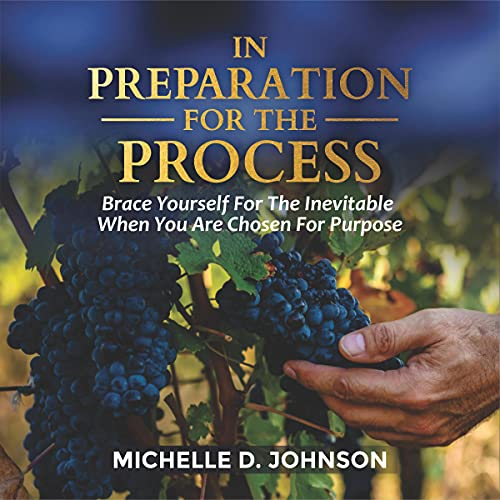 In Preparation for the Process Audiobook By Michelle Johnson cover art