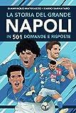 La storia del grande Napoli in 501 domande e risposte...