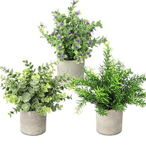 Linkstyle Künstliche Pflanzen, Mini Eukalyptus Rosmarin Pflanze Klein Kunstpflanzen Set im Topf für Drinnen draußen Haus Garten Küche Fensterbrett Deko, 3 Stück