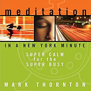 Meditation in a New York Minute cover art