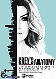 512IHHg5 jL. SL160  - Grey's Anatomy saison 14 perd un de ses membres