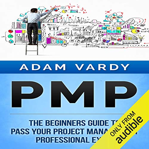 PMP: The Beginners Guide to Pass Your Project Management Professional Exam  By  cover art