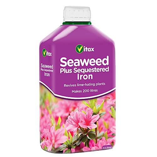 Vitax Algues Plus séquestrer Fer