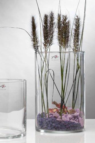 Glasvase CYLI Glas Vase Tischvase Blumenvase Zylinder 30 cm