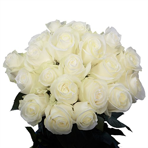 GlobalRose White Roses- 50 Sweet Natural Flowers