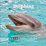 Dolphin 8.5 X 8.5 Calendar September 2020 -December 2021: Monthly Calendar with U.S./UK/ Canadian/Christian/Jewish/Muslim Holidays-Marine Life