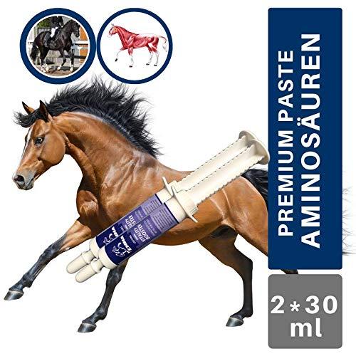 EMMA® Aminosäuren I Amino Booster I Vitamin E Bierhefe I Energy Booster I Aufbaufutter gegen Muskelkater I Regeneration der Muskulatur I Muskelaufbau Pferd I Salze Magnesium Pferd 2 * 30 ml