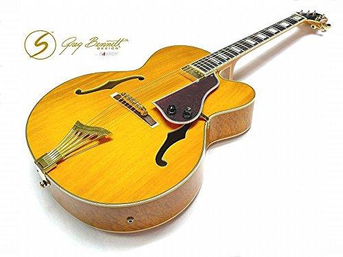 Jazz Gitarre Samick